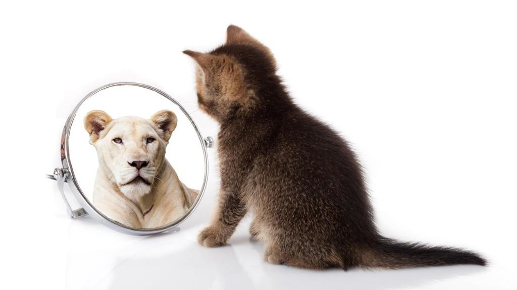 Som leder ser du potentialet, både i dig selv og andre – og mestrer MOD på et nyt niveau