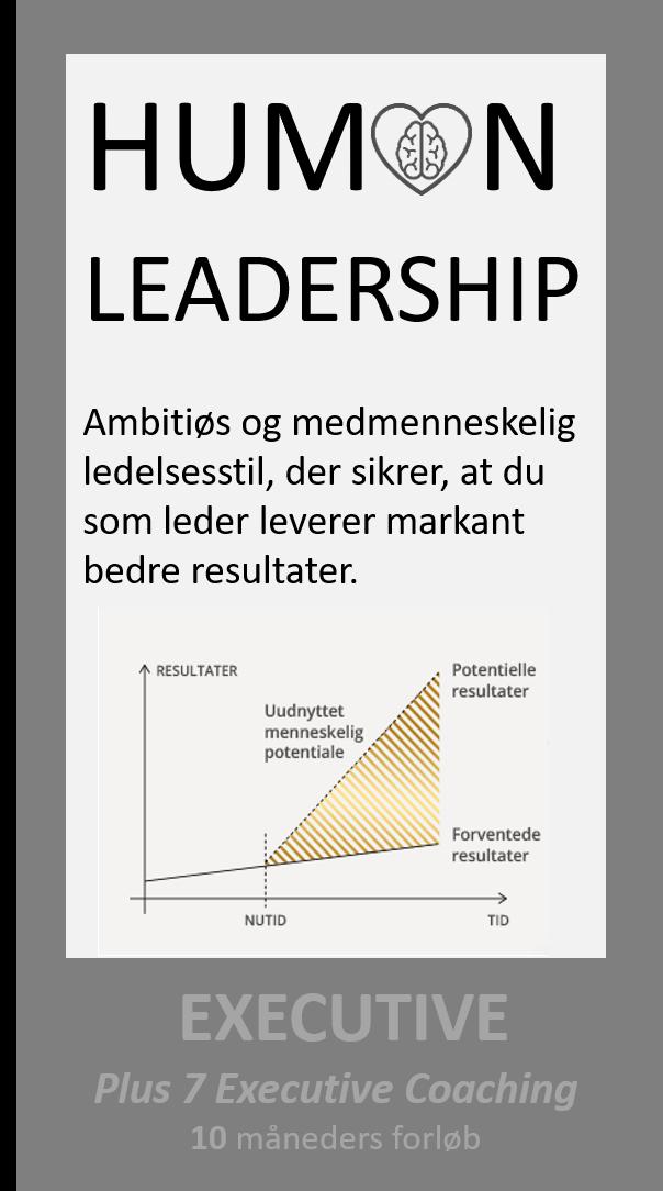 Human Leadership Executive